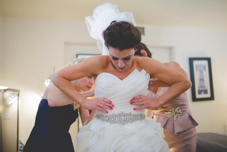 Philadelphia_wedding_photographer_dog-124