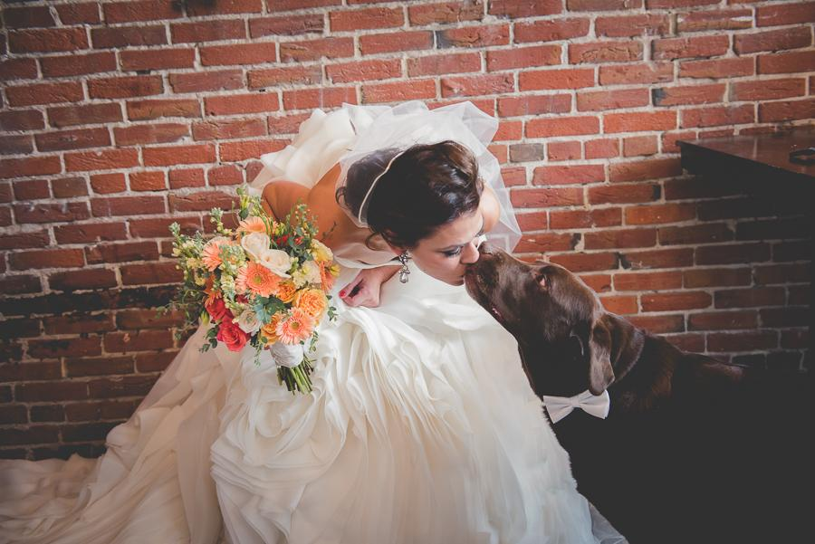 Philadelphia_wedding_photographer_dog-131