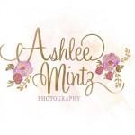 AshleeMintz