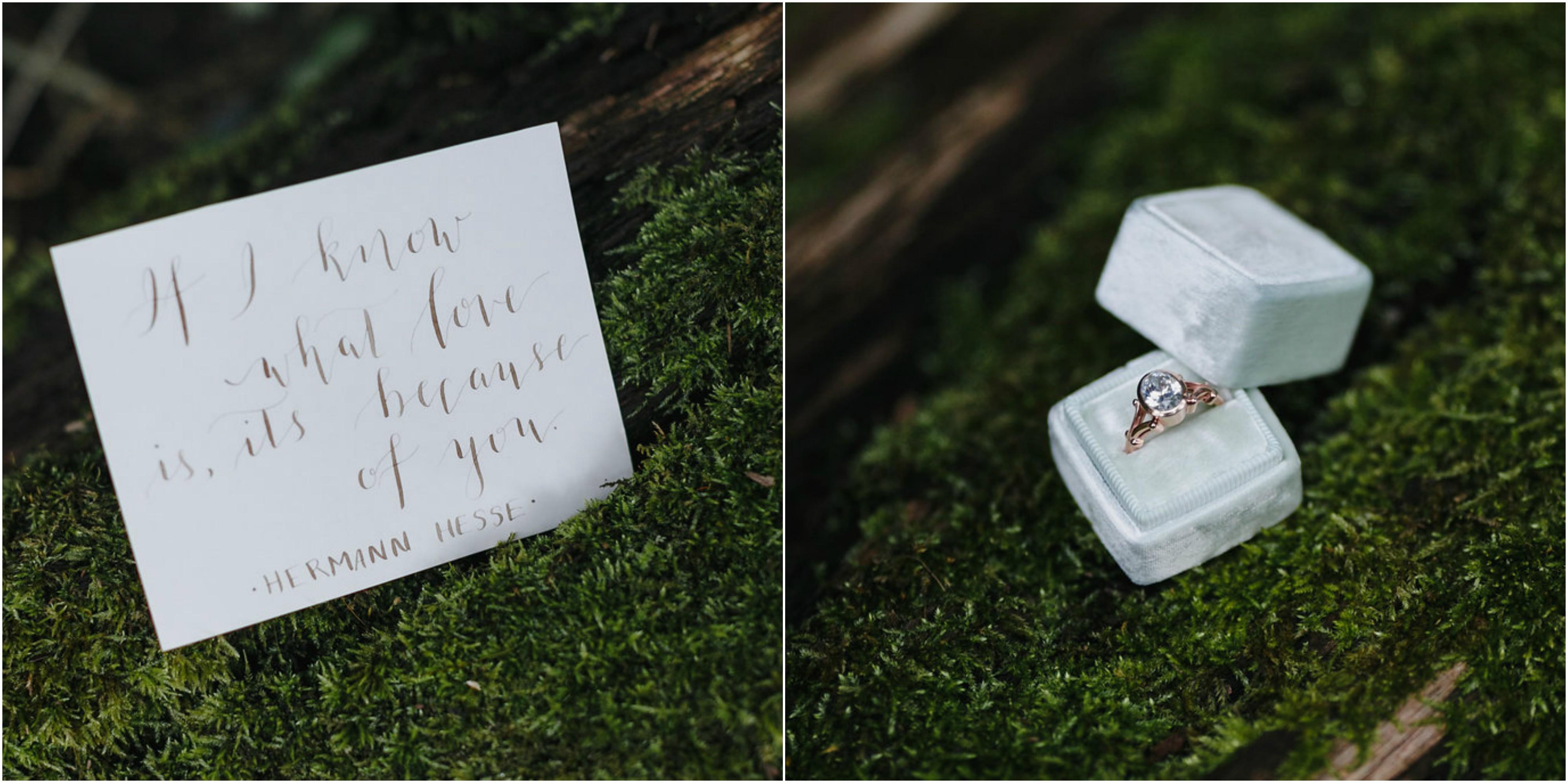 L Priori Jewelry Proposal Philadelphia Wedding Ring Philly In Love Philadelphia Weddings 4