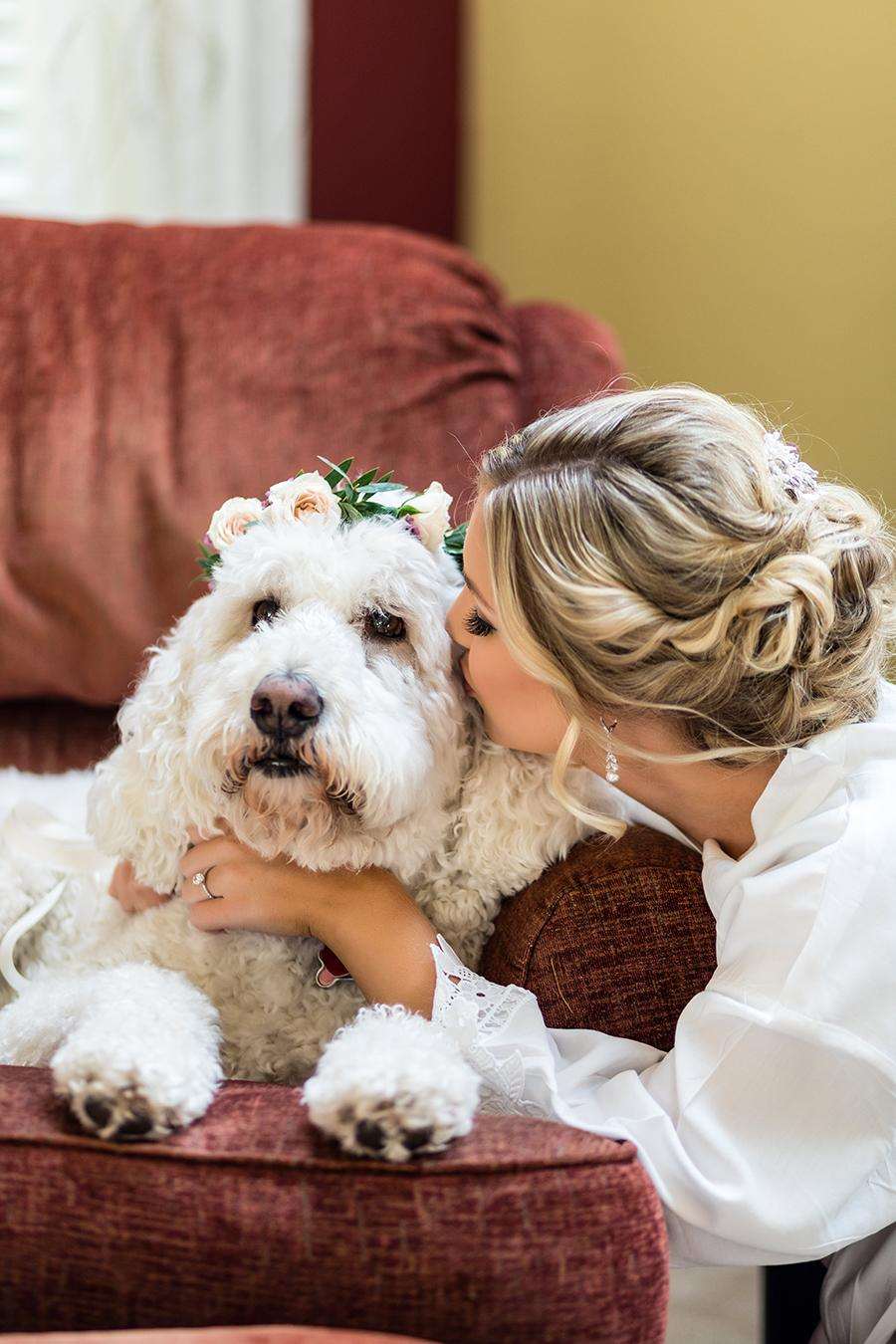 bride kissing dog wearing flower crown by ashley gerrity photography and philly in love