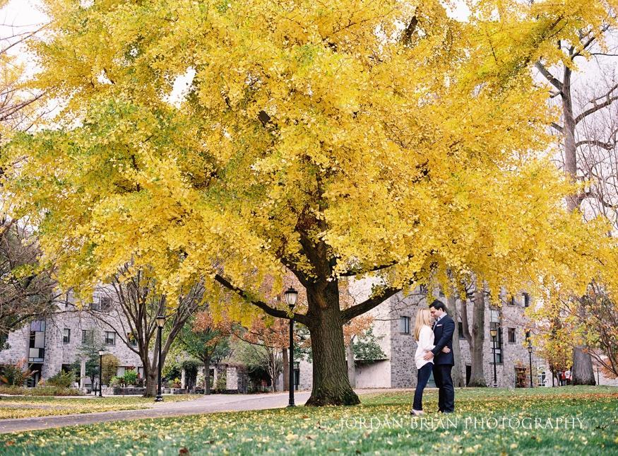 couple hugging under golden tree