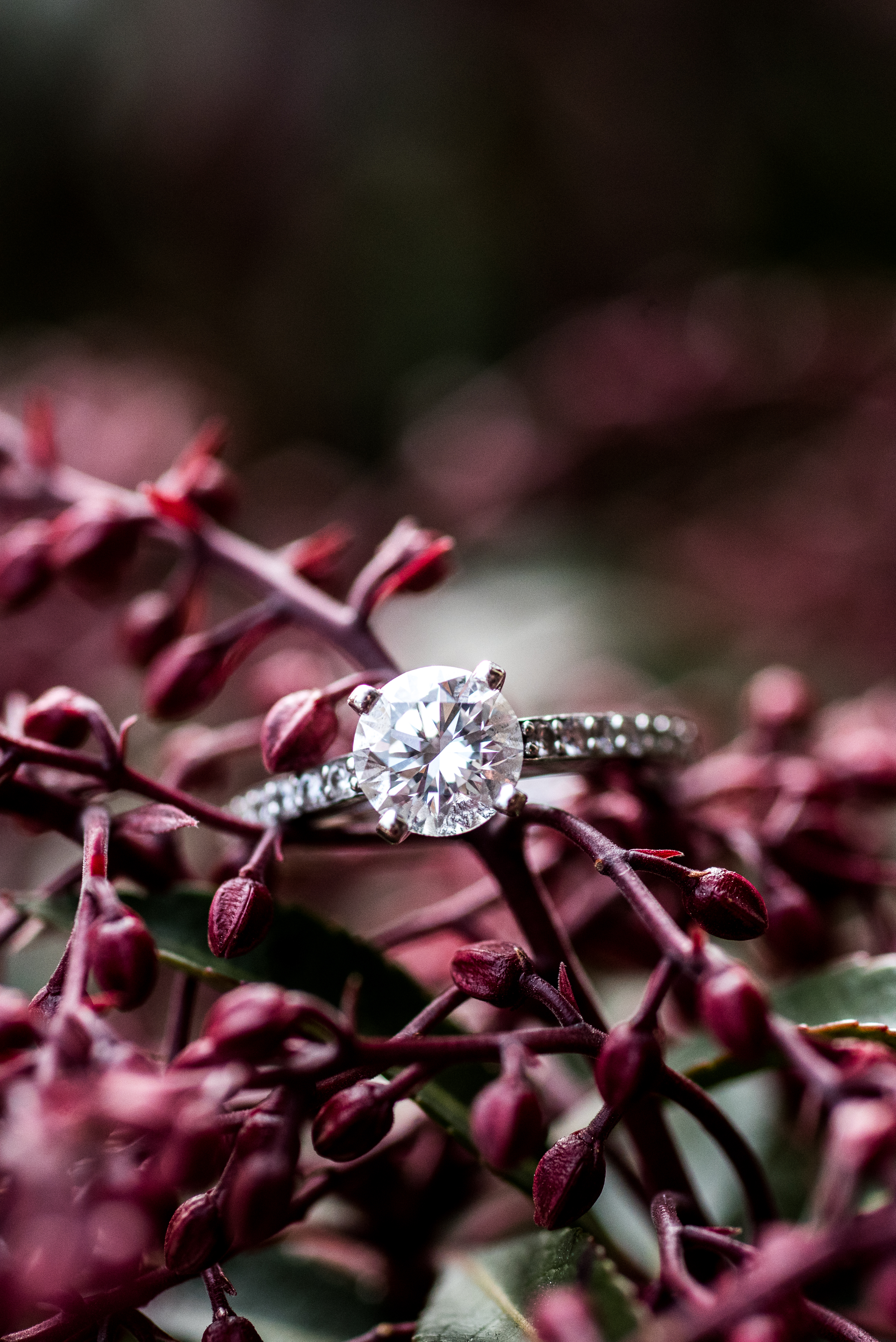 engagement ring in leaves