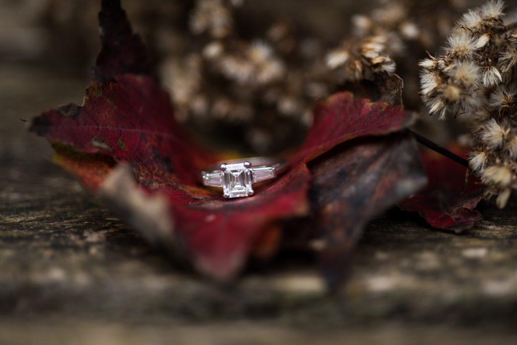 engagement ring in Autumn leaves