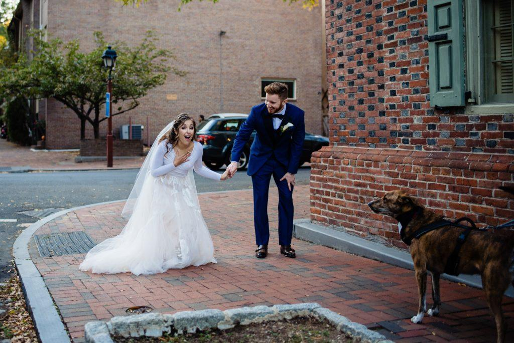 surprised bride, groom and their dog