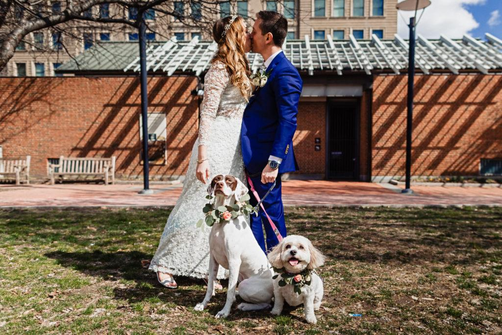 power plant productions wedding, nik morina, dogs