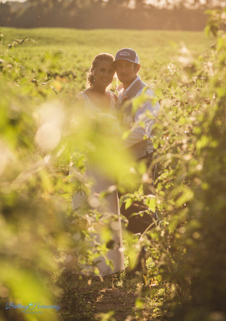 Philadelphia wedding photographers, brittany harmening photography, country wedding, bride and groom in field