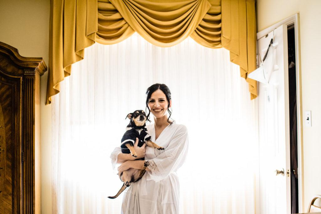 bride with dog, crystal tea room wedding nicole cordisco photography